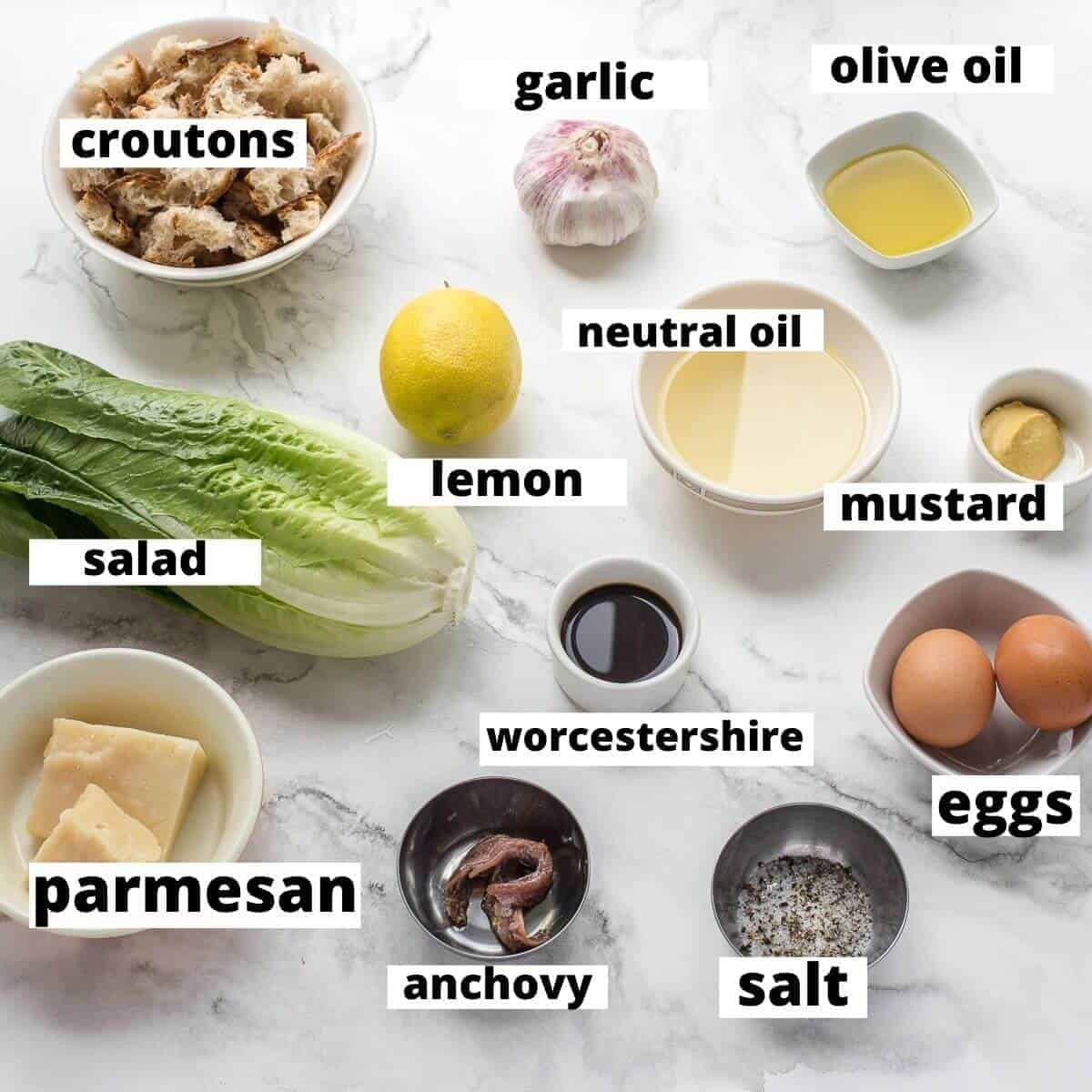 ingredients for caesar salad on a marble background