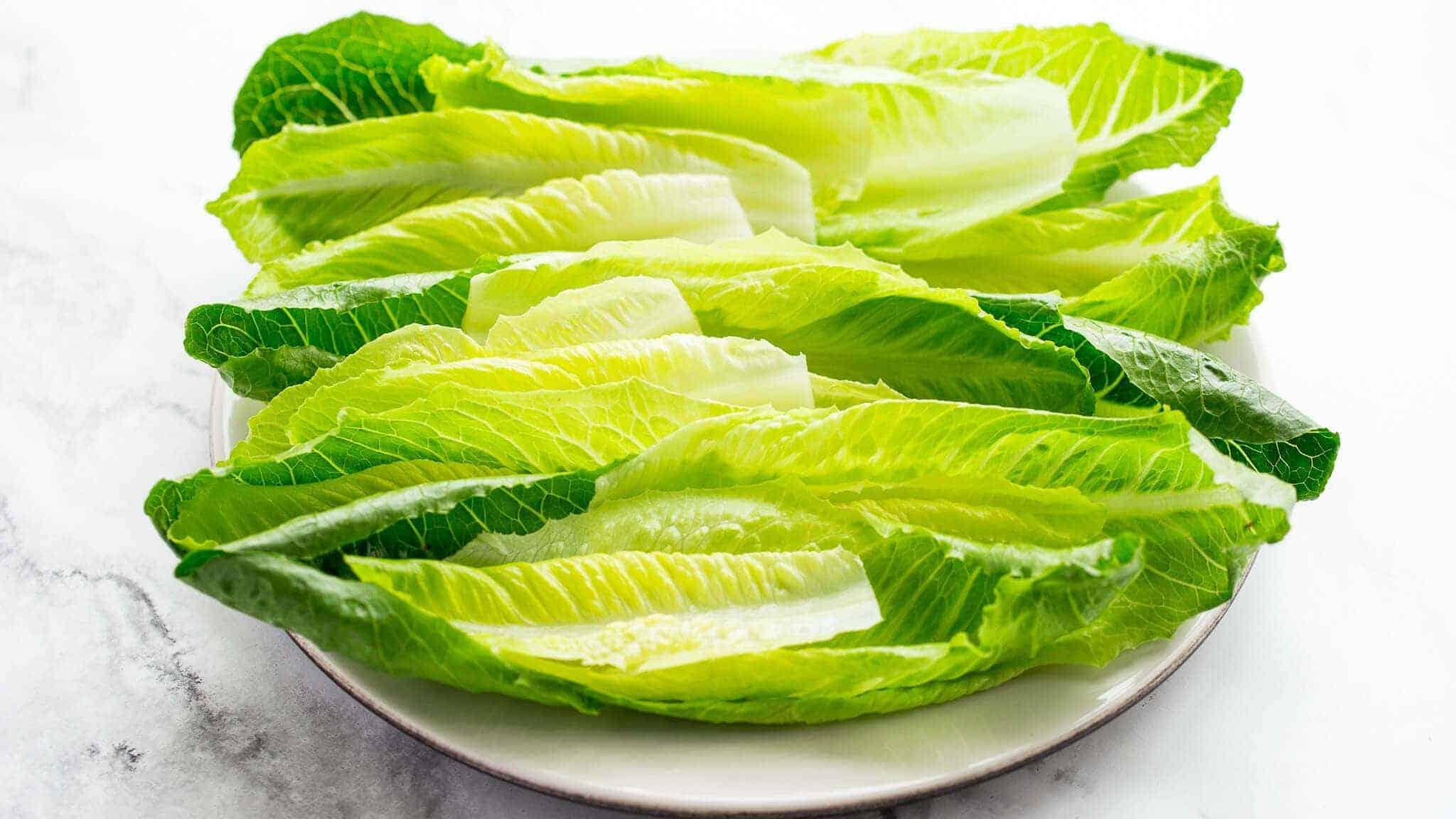 romaine lettuce leaves for Caesar salad