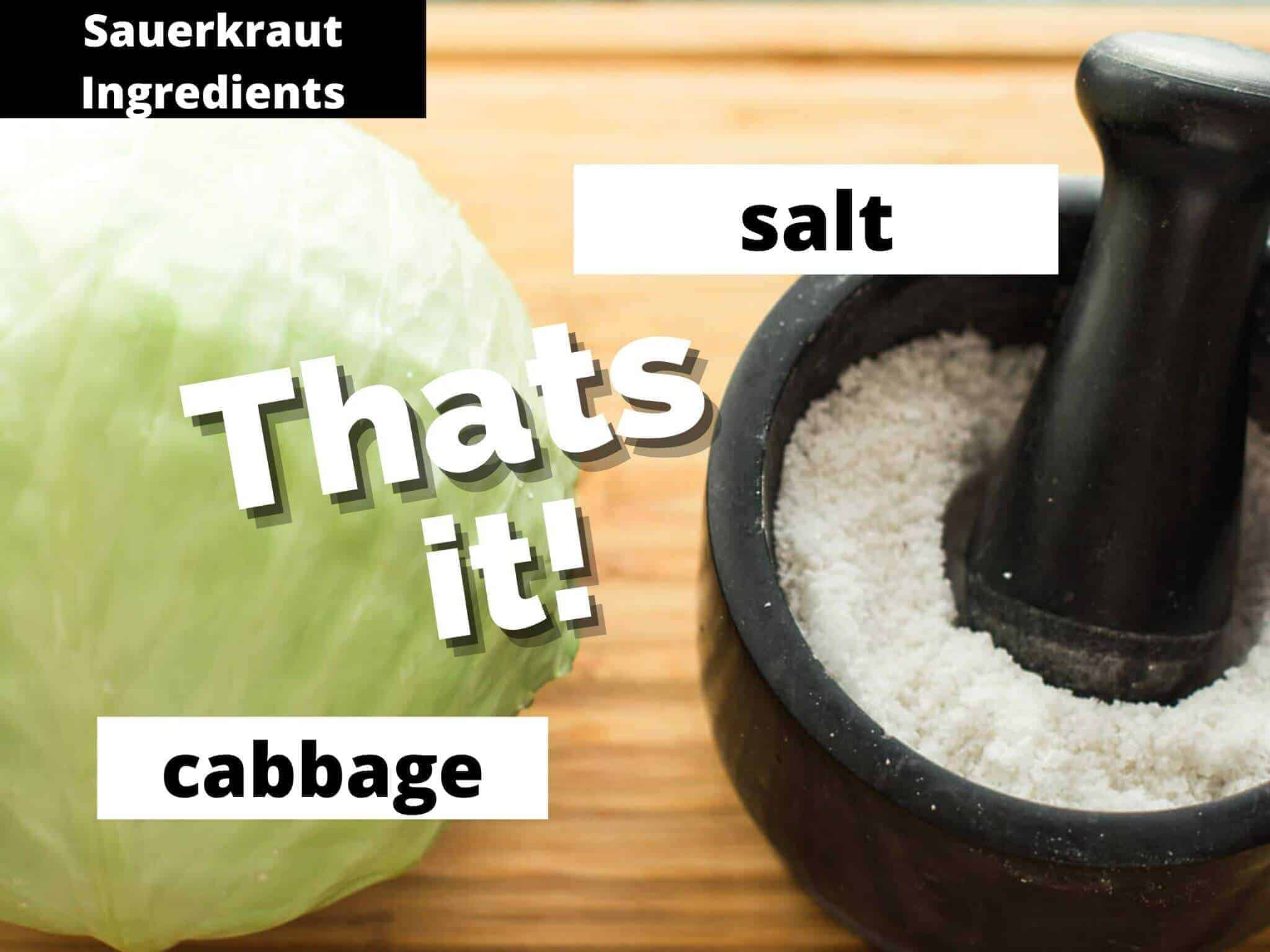 cabbage and salt on wooden board