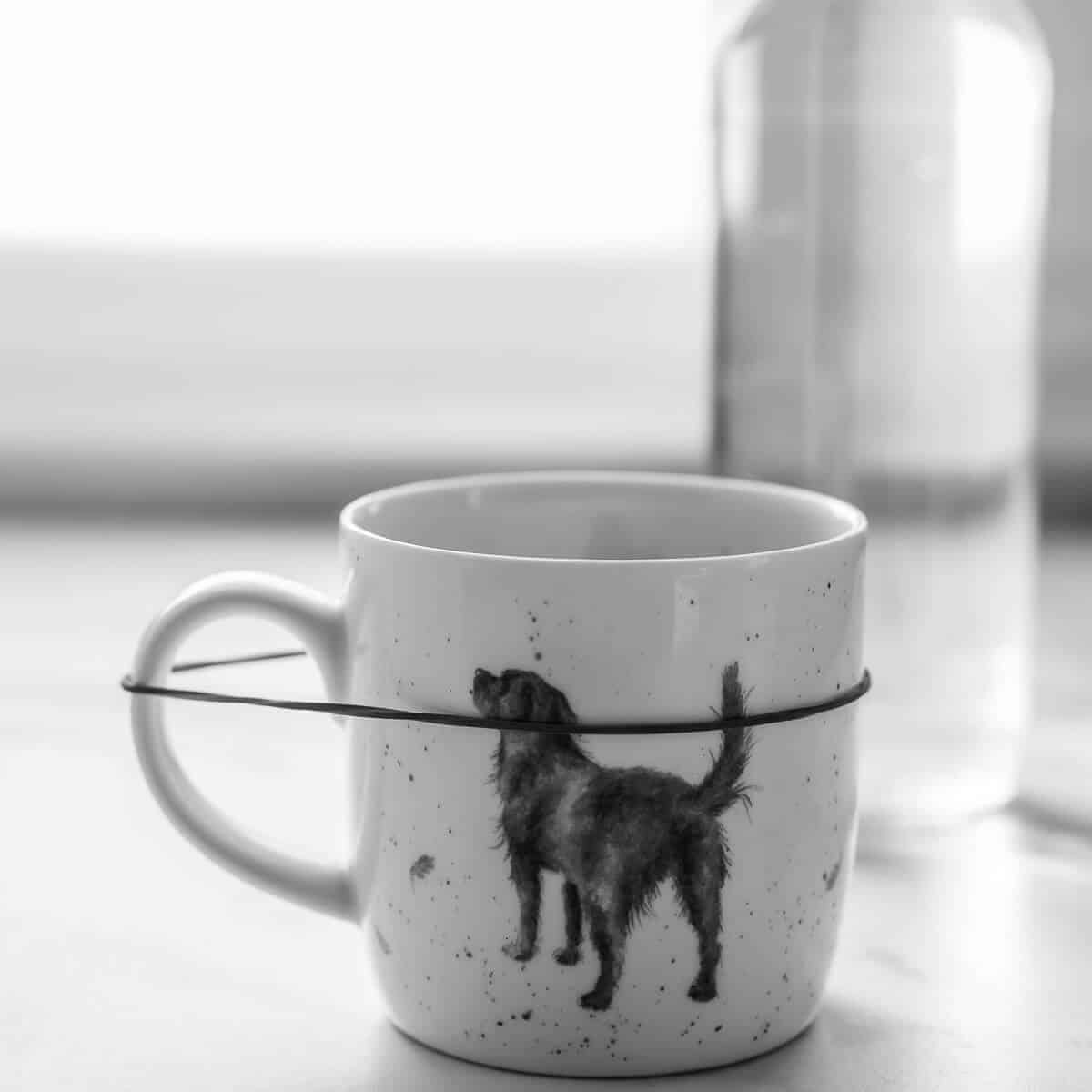 white coffee mug with dog picture holding wild rice