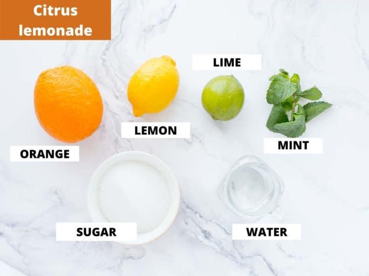 ingredients for making citrus lemonade