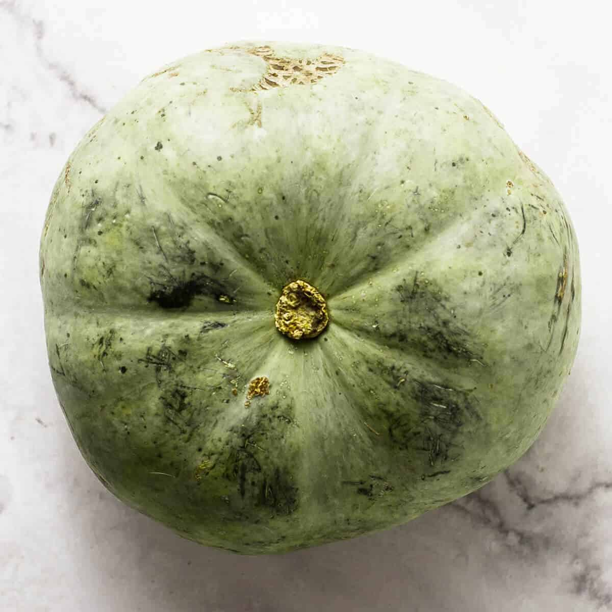 crown prince green pumpkin
